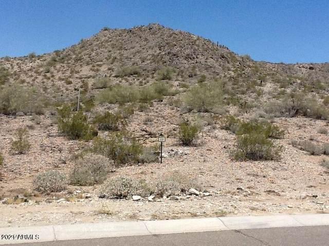 21382 W Black Rock Drive, Buckeye, AZ 85396 (MLS #6251025) :: The Luna Team