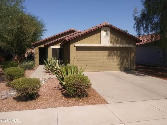14714 W Calavar Road, Surprise, AZ 85379 (MLS #6251050) :: Yost Realty Group at RE/MAX Casa Grande