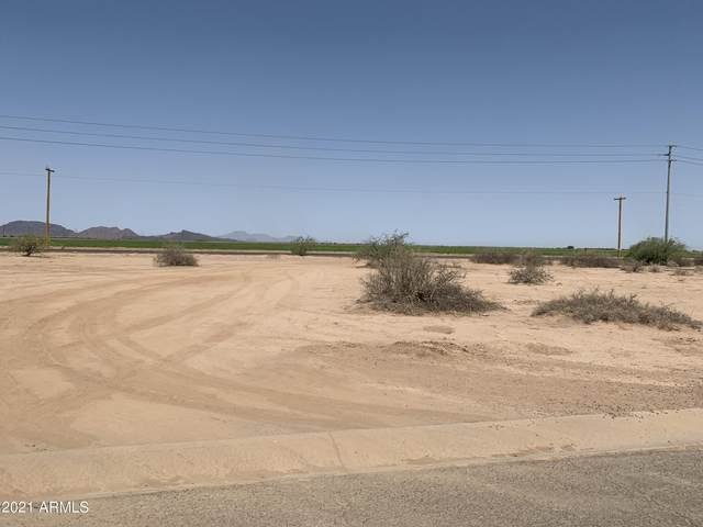 15800 S Animas Road, Arizona City, AZ 85123 (MLS #6251073) :: Executive Realty Advisors