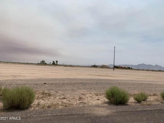 3535 N Algodon Drive, Eloy, AZ 85131 (MLS #6251114) :: Justin Brown | Venture Real Estate and Investment LLC