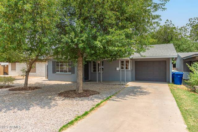 341 S Lesueur, Mesa, AZ 85204 (MLS #6251138) :: Executive Realty Advisors