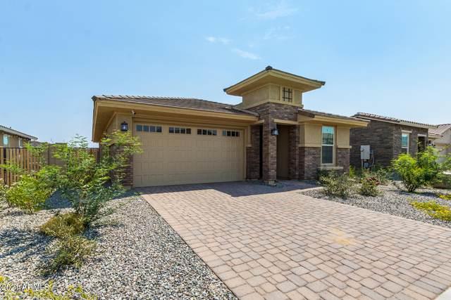 18765 W Colter Street, Litchfield Park, AZ 85340 (MLS #6251178) :: Midland Real Estate Alliance