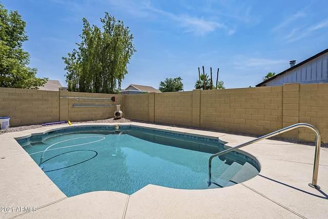 1505 W Cheyenne Drive, Chandler, AZ 85224 (MLS #6251179) :: Conway Real Estate