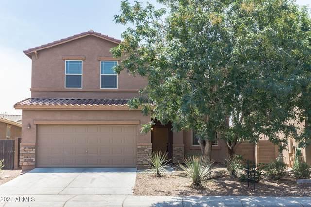 42393 W Somerset Drive, Maricopa, AZ 85138 (MLS #6251200) :: Yost Realty Group at RE/MAX Casa Grande