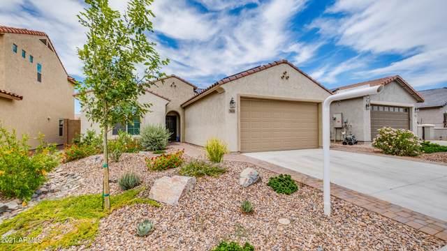 5674 W Valor Way, Florence, AZ 85132 (MLS #6251207) :: Keller Williams Realty Phoenix