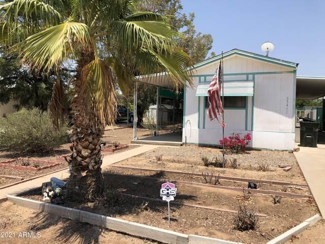 33411 N 223RD Drive, Wittmann, AZ 85361 (MLS #6251217) :: Balboa Realty