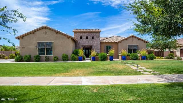17727 E Appaloosa Drive, Queen Creek, AZ 85142 (MLS #6251219) :: Yost Realty Group at RE/MAX Casa Grande