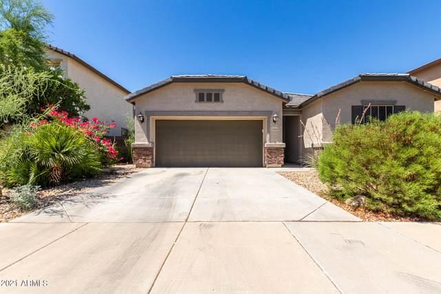 15552 W Poinsettia Drive, Surprise, AZ 85379 (MLS #6251244) :: Yost Realty Group at RE/MAX Casa Grande