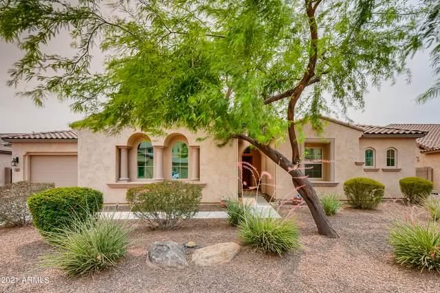 3019 E Wildhorse Drive, Gilbert, AZ 85297 (MLS #6251273) :: Justin Brown | Venture Real Estate and Investment LLC