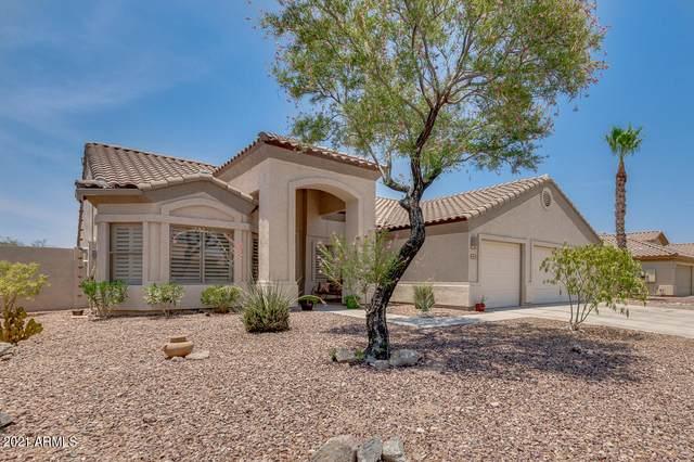 10894 S Turtle Dove Drive, Goodyear, AZ 85338 (MLS #6251298) :: The Laughton Team