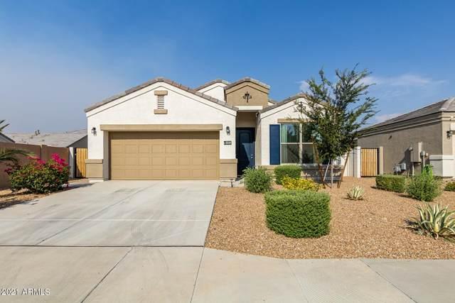 33139 N Ash Tree Lane, Queen Creek, AZ 85142 (MLS #6251331) :: Dave Fernandez Team | HomeSmart