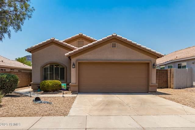 23606 N 22ND Way, Phoenix, AZ 85024 (MLS #6251347) :: Selling AZ Homes Team