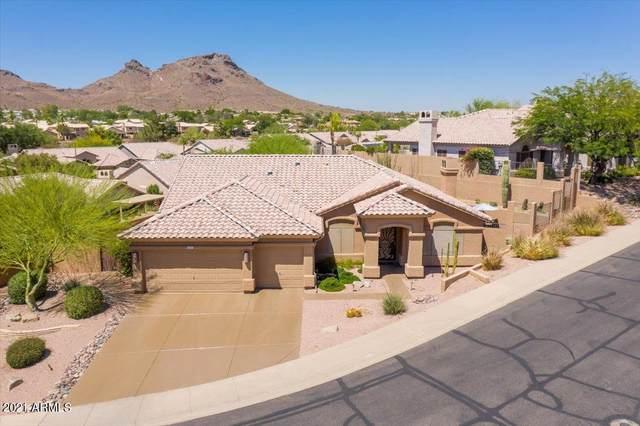 1312 E Ludlow Drive, Phoenix, AZ 85022 (MLS #6251385) :: Dave Fernandez Team | HomeSmart