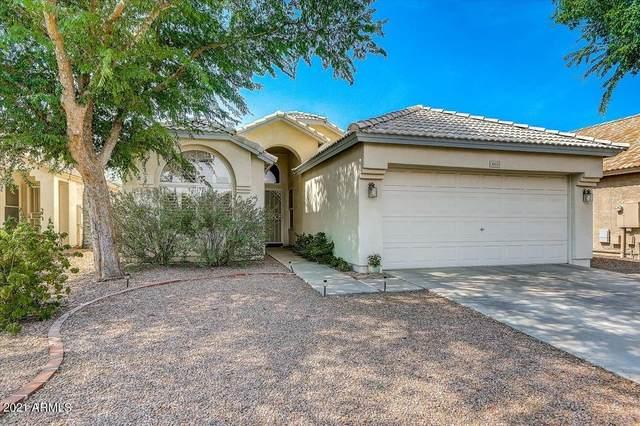 4213 E Rosemonte Drive, Phoenix, AZ 85050 (MLS #6251387) :: Selling AZ Homes Team
