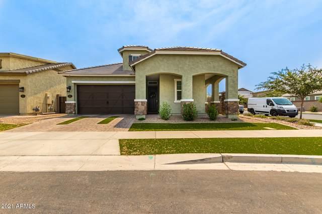 2717 S Wildrose, Mesa, AZ 85209 (MLS #6251397) :: Yost Realty Group at RE/MAX Casa Grande