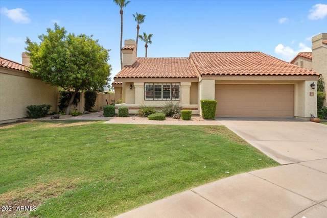 9987 E Fanfol Drive, Scottsdale, AZ 85258 (MLS #6251404) :: Yost Realty Group at RE/MAX Casa Grande