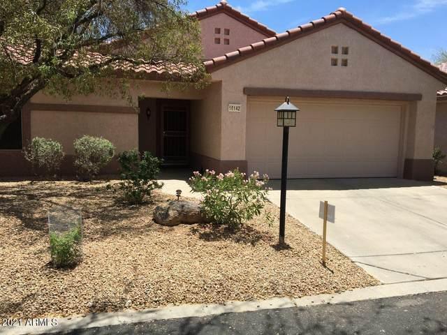 16142 W Starlight Drive, Surprise, AZ 85374 (MLS #6251406) :: Dave Fernandez Team | HomeSmart
