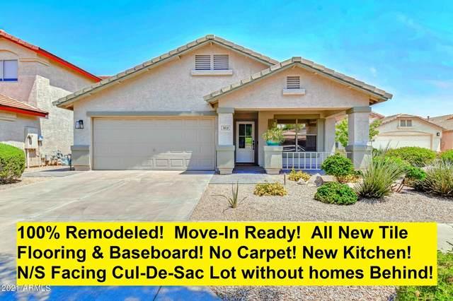 3828 E Irma Lane, Phoenix, AZ 85050 (MLS #6251447) :: Walters Realty Group