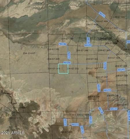 0 None Land, St Johns, AZ 85936 (MLS #6251455) :: Yost Realty Group at RE/MAX Casa Grande