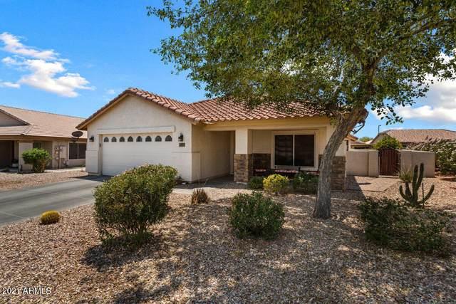 664 S 231ST Drive, Buckeye, AZ 85326 (MLS #6251469) :: Conway Real Estate