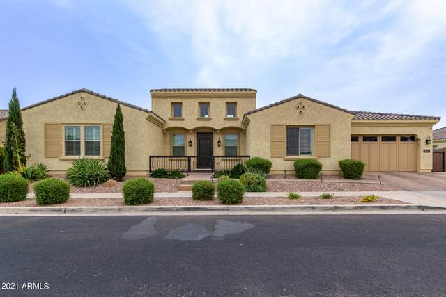 3007 E Branham Lane, Phoenix, AZ 85042 (MLS #6251482) :: Openshaw Real Estate Group in partnership with The Jesse Herfel Real Estate Group