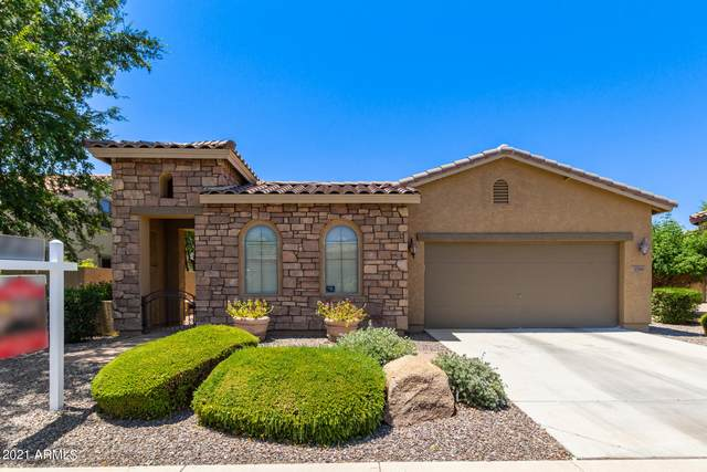 3795 E Glacier Place, Chandler, AZ 85249 (MLS #6251509) :: The Everest Team at eXp Realty