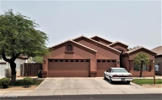 718 W Siesta Way, Phoenix, AZ 85041 (MLS #6251517) :: Dave Fernandez Team | HomeSmart