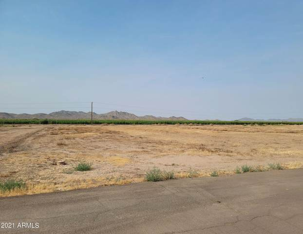 23009 W La Mirada Drive, Buckeye, AZ 85326 (MLS #6251520) :: Executive Realty Advisors
