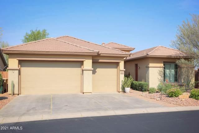 41020 N Harbour Town Way, Anthem, AZ 85086 (MLS #6251521) :: Klaus Team Real Estate Solutions