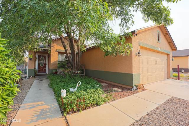 11789 W Larkspur Road, El Mirage, AZ 85335 (MLS #6251569) :: TIBBS Realty