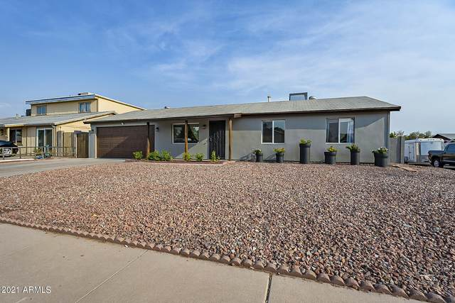 3819 E Pershing Avenue, Phoenix, AZ 85032 (MLS #6251585) :: Executive Realty Advisors