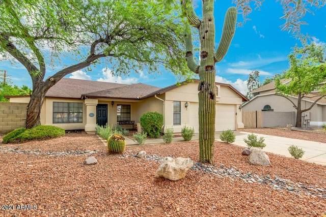 19231 N 43RD Drive, Glendale, AZ 85308 (MLS #6251625) :: Yost Realty Group at RE/MAX Casa Grande