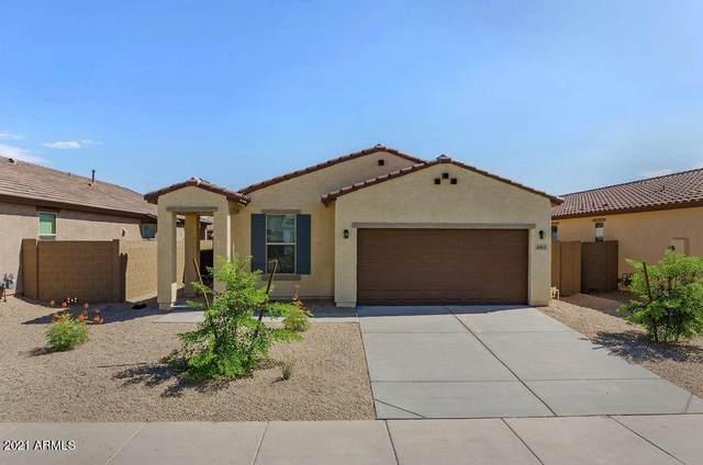 16815 W Portland Street, Goodyear, AZ 85338 (MLS #6251631) :: Yost Realty Group at RE/MAX Casa Grande