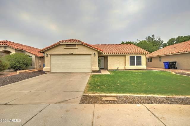 1468 E Tremaine Avenue, Gilbert, AZ 85234 (MLS #6251637) :: Keller Williams Realty Phoenix