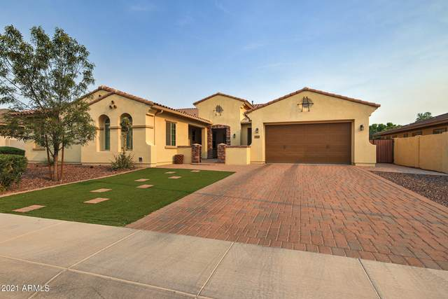 3361 E Azalea Drive, Chandler, AZ 85286 (MLS #6251765) :: Dave Fernandez Team | HomeSmart