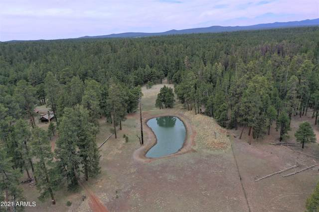 TBD Forest Road 122, Happy Jack, AZ 86024 (MLS #6251768) :: The Helping Hands Team