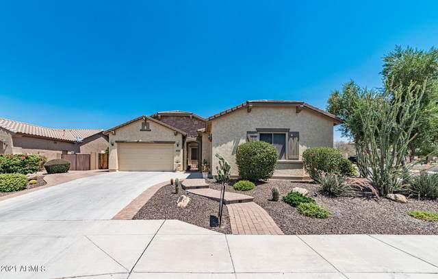 5528 W Alyssa Lane, Phoenix, AZ 85083 (MLS #6251792) :: Yost Realty Group at RE/MAX Casa Grande