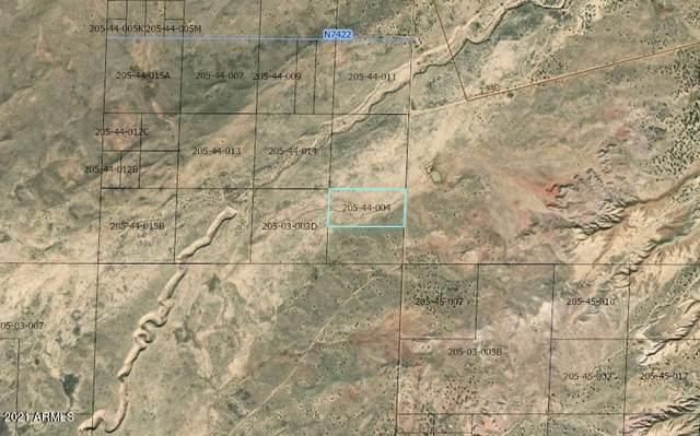 0 0 Land, St Johns, AZ 85936 (MLS #6251828) :: CANAM Realty Group