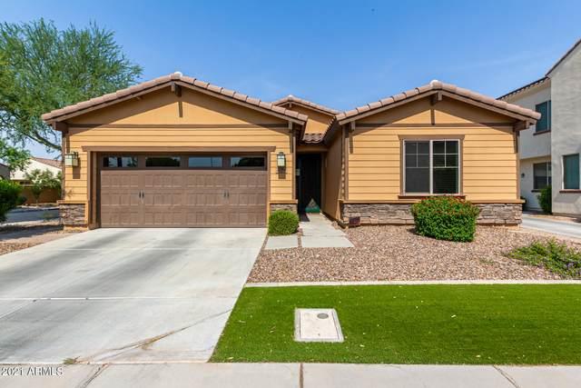 3594 S Jasmine Drive, Chandler, AZ 85286 (MLS #6251831) :: Dave Fernandez Team | HomeSmart