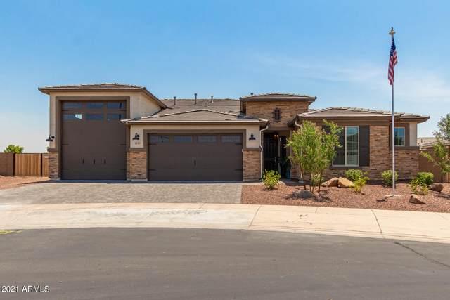 17271 W Bent Tree Drive, Surprise, AZ 85387 (MLS #6251833) :: Balboa Realty