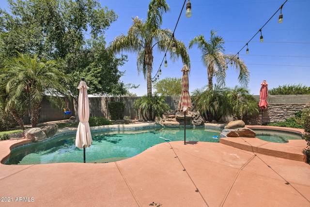 39258 N Kelley Circle, San Tan Valley, AZ 85140 (MLS #6251871) :: Yost Realty Group at RE/MAX Casa Grande