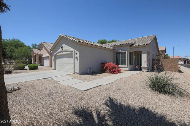 12678 W Mulberry Drive, Avondale, AZ 85392 (MLS #6251873) :: Yost Realty Group at RE/MAX Casa Grande