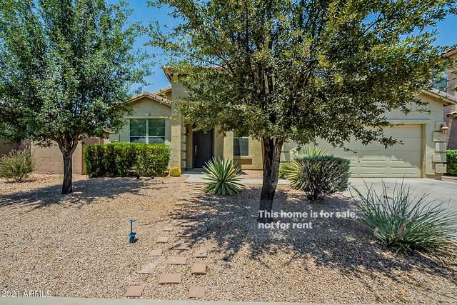 3090 E Silversmith Trail, San Tan Valley, AZ 85143 (MLS #6251899) :: Yost Realty Group at RE/MAX Casa Grande