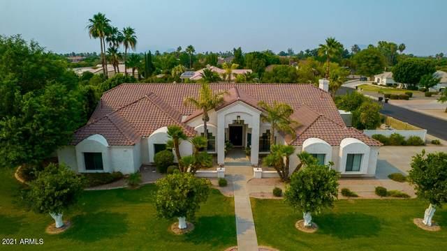 3932 E June Street, Mesa, AZ 85205 (MLS #6251956) :: Arizona Home Group