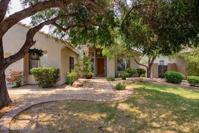 4703 E Williams Drive, Phoenix, AZ 85050 (MLS #6251960) :: Yost Realty Group at RE/MAX Casa Grande