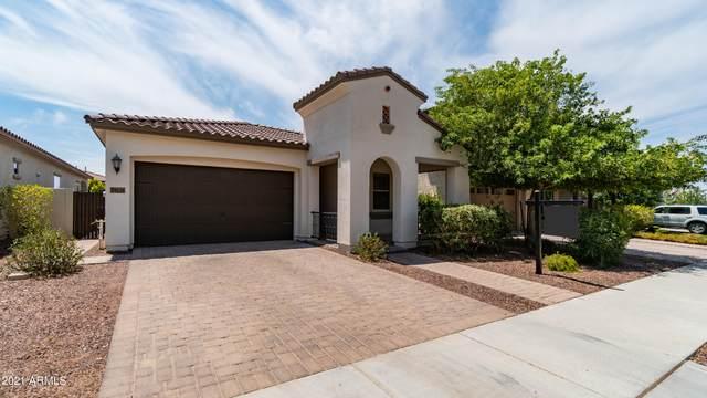 20611 W Edgemont Avenue, Buckeye, AZ 85396 (MLS #6251961) :: Power Realty Group Model Home Center