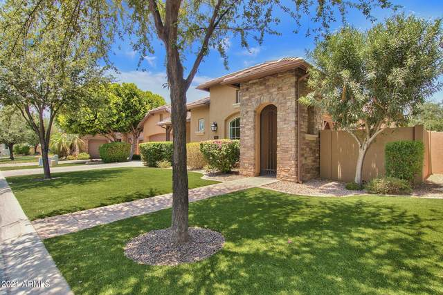 1120 W Yosemite Place, Chandler, AZ 85248 (MLS #6251998) :: CANAM Realty Group