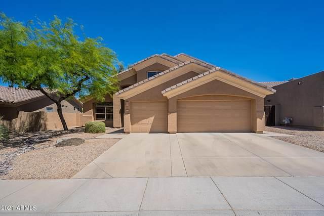 4380 E Lariat Lane, Phoenix, AZ 85050 (MLS #6252007) :: The Laughton Team