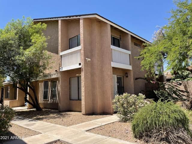 2833 E Tracy Lane #1, Phoenix, AZ 85032 (MLS #6252063) :: Yost Realty Group at RE/MAX Casa Grande