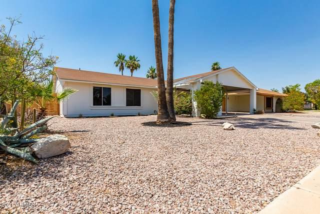 1605 W Comstock Drive, Chandler, AZ 85224 (MLS #6252076) :: The Laughton Team